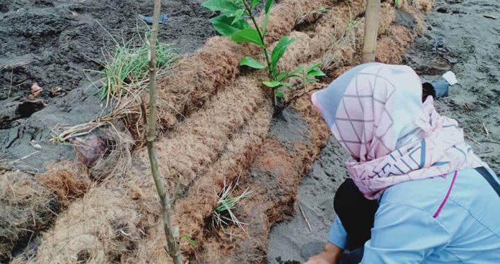 Perempuan, Korban Utama Pemanasan Global