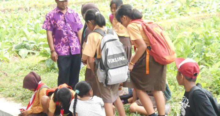 Harus Ada Usaha Alternatif Bagi Keluarga Petani Tembakau